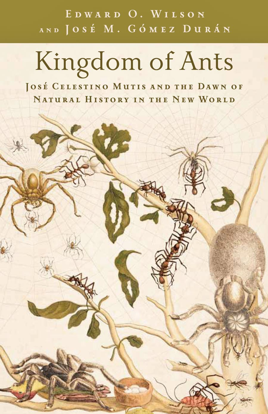 Kingdom Of Ants – Jose Celestino Mutis and the Dawn of Natural History in the New World the water kingdom a secret history of china