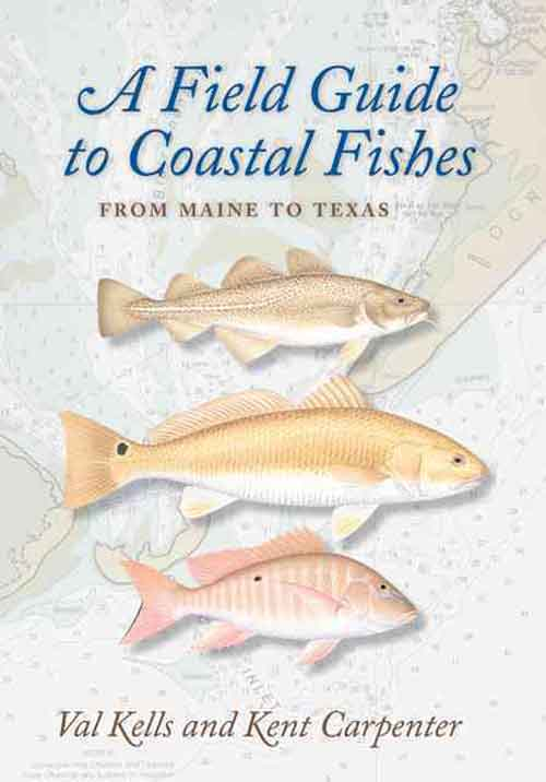 A Field Guide to Coastal Fishes – From Maine to Texas from panamax to panamix