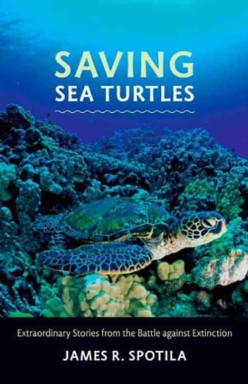 Saving Sea Turtles – Extraordinary Stories from the Battle against Extinction pj harvey pj harvey stories from the city stories from the sea