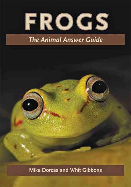 Frogs – The Animal Answer Guide aristophanes the frogs