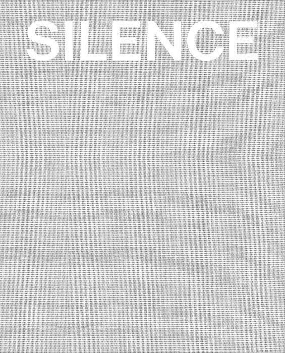 Silence tino sehgal