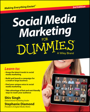 Social Media Marketing For Dummies dionne kasian lew the social executive how to master social media and why it s good for business