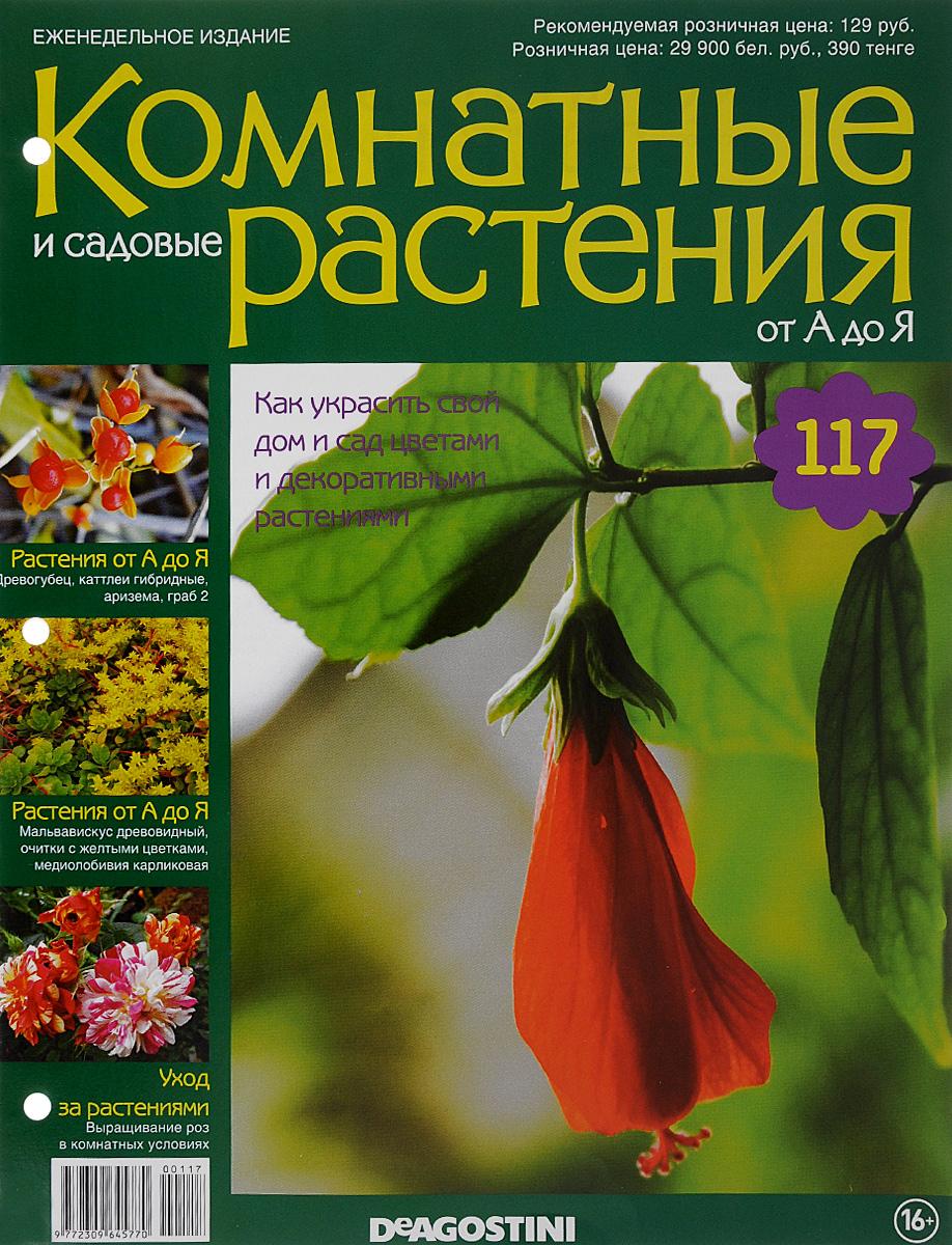 Журнал Комнатные и садовые растения. От А до Я №117 год до школы от а до я тетрадь по подготовке к школе