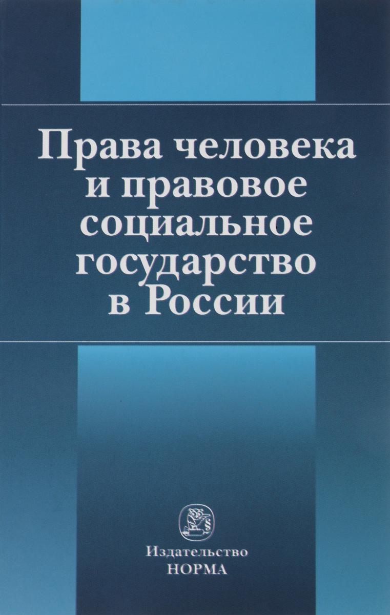 Права человека и правовое социальное государство в России.