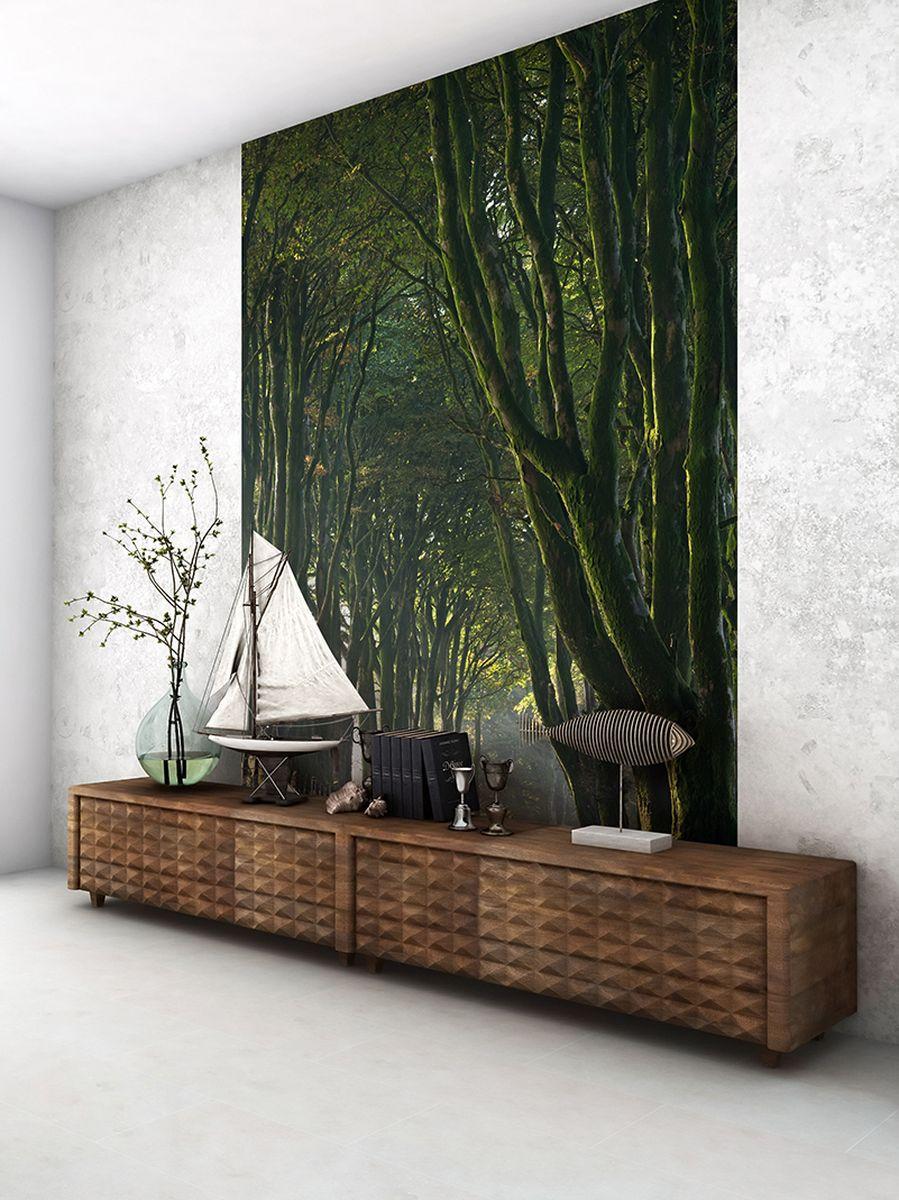 Фотообои PosterMarket Королевская дорога, размер 184 х 254 смWM-18Фотообои PosterMarket представляют собой изображение красивых деревьев, которые окружены со всех сторон верескововыми пустошамиДартмура. Дартмур - один из самых красивых национальных парков Великобритании, расположен на юго-западе Англии.Фотообои позволят создать неповторимый облик помещения, в котором они размещены.Фотообои наносятся на стены одним большим полотном. Они не впитывают жир, грязь, чернила, краски и пластилин.Фотообои снова вошли в нашу жизнь, став модным направлением декорирования интерьера.Выбрав правильную фактуру и сюжет изображения можно добиться невероятного эффекта живого присутствия.
