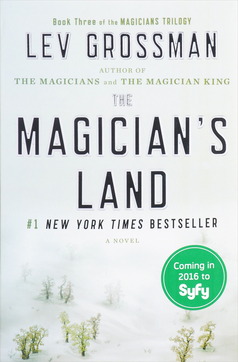 The Magician's Land j randy taraborrelli becoming beyonce the untold story
