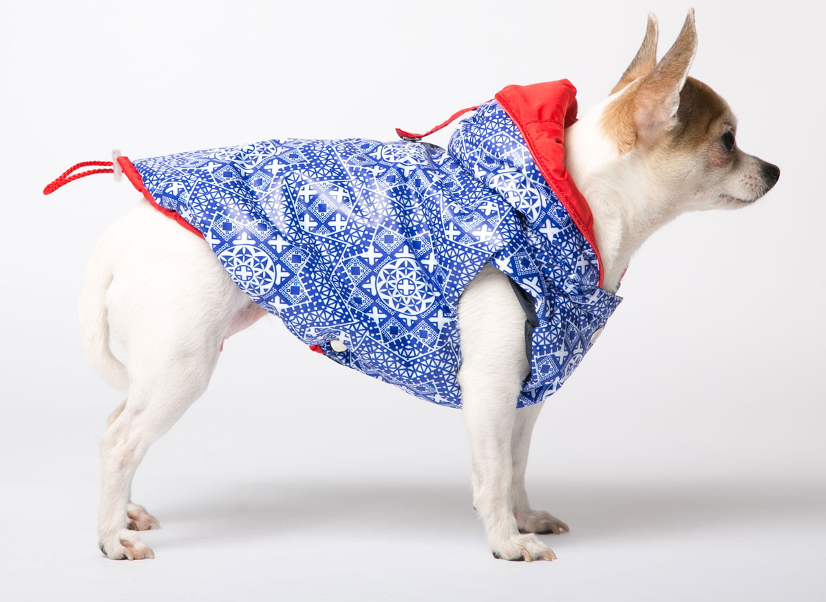 Жилет для собак Yoriki Калейдоскоп, унисекс, цвет: синий, белый. Размер XL339-04Жилет для собак Yoriki изготовлен из полиэстера, защищающего ответра и осадков, а в качестве подкладки используется вискоза,которая обеспечивает отличный воздухообмен. Жилет застегивается на кнопки и отлично подойдет дляпрогулок в прохладную погоду. Еголегко надевать и снимать. Благодаря такому жилету простуда не грозитвашему питомцу.Обхват шеи: 30-34 см.Длина по спинке: 33 см.Объем груди: 46-53 см.Одежда для собак: нужна ли она и как её выбрать. Статья OZON Гид