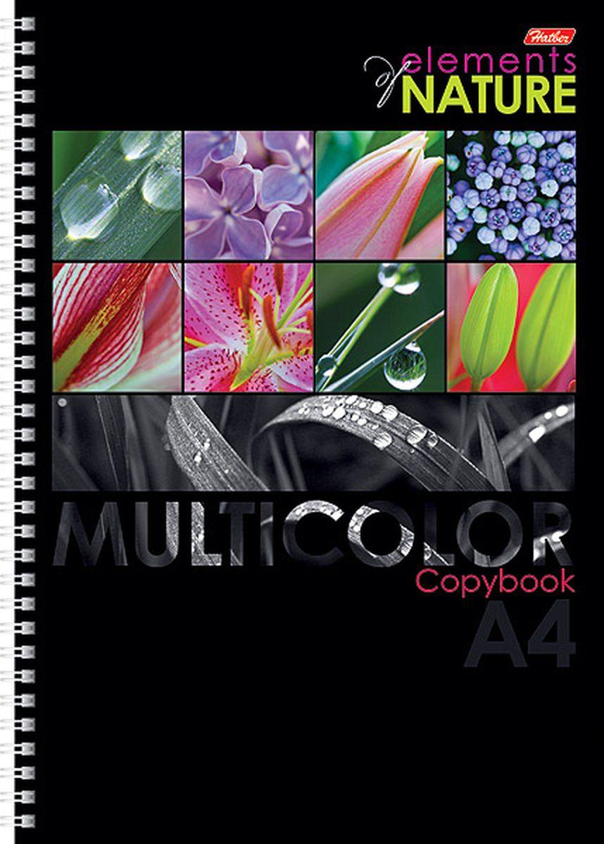 Hatber Тетрадь Multicolor 96 листов в клетку цвет красный черный формат А496Т4вмВ1грТетрадь Hatber Multicolor предназначена для объемных записей и незаменима для старшеклассников и студентов.Обложка тетради с закругленными углами выполнена из картона, что позволит сохранить тетрадь в аккуратном состоянии на протяжении всего времени использования. Обложка украшена красочными изображениями растений и цветов. Внутренний блок тетради на металлическом гребне состоит из 96 листов белой бумаги с линовкой в клетку голубого цвета без полей. Все листы блока являются отрывными и снабжены микроперфорацией, а также стандартными отверстиями для подшивки в папки с кольцевым механизмом.Формат тетради А4.