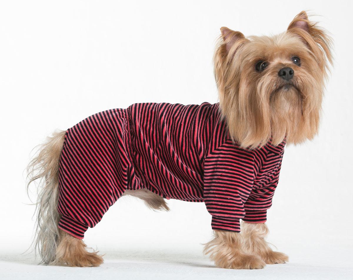 Комбинезон для собак Yoriki Тигровый, унисекс, цвет: красный, черный. Размер M кепка для собак yoriki плащевка цветная размер универсальный