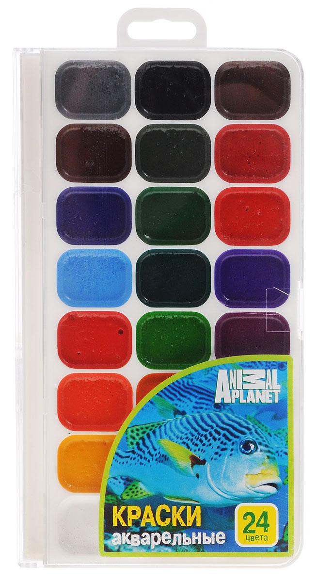 Action! Акварель медовая Animal Planet 24 цветаAP-WP18/2 24 цв_новый дизайнАкварель Action! Animal Planet предназначена для детского творчества и различных художественных работ.Краски имеют яркие насыщенные цвета, легко наносятся, быстро сохнут и безвредны для здоровья ребенка. Акварель изготовлена на основе органических пигментов с добавлением патоки.Комплект включает в себя акварельные краски 24-х цветов.
