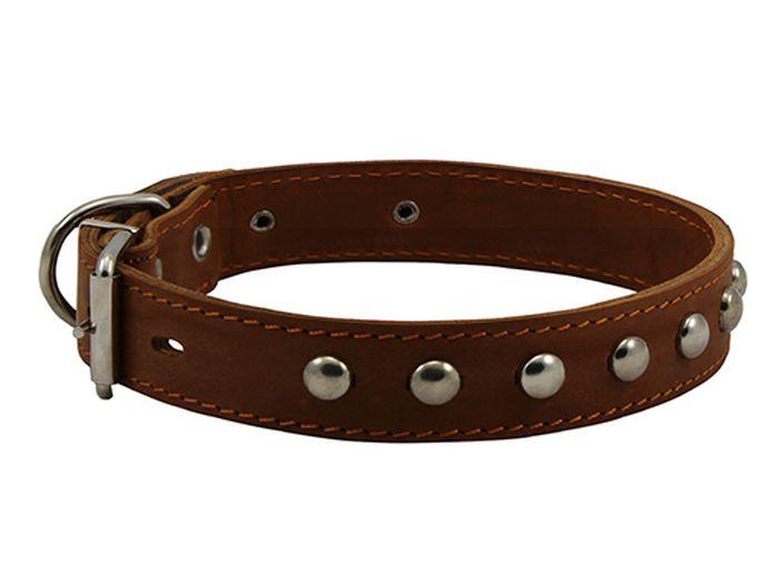 Ошейник для собак Каскад, двойной с украшением, ширина 2 см, диаметр 27-35 см, цвет: коричневый