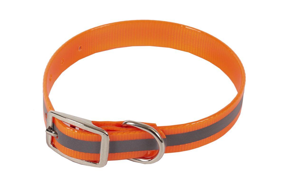 Ошейник для собак Каскад Синтетик, со светоотражающей полосой, 20 мм, обхват шеи 30-40 см, цвет: оранжевый00220402-03Ошейник для собак Каскад Синтетик, изготовлен из высокотехнологичного биотана (нейлон, термопластичный полиуретан). Сверхпрочный ошейник удобен и практичен в использовании, не выгорает, устойчив к влажности, не рвется и не деформируется. Изделие оснащено светоотражающей полоской. Размер ошейника регулируется с помощью металлической пряжки, которая фиксируется на одном из 6 отверстий изделия. Яркий ошейник Каскад Синтетикидеально подойдет для активных собак, для прогулок на природе.Обхват шеи: 30-40 смШирина: 20 мм