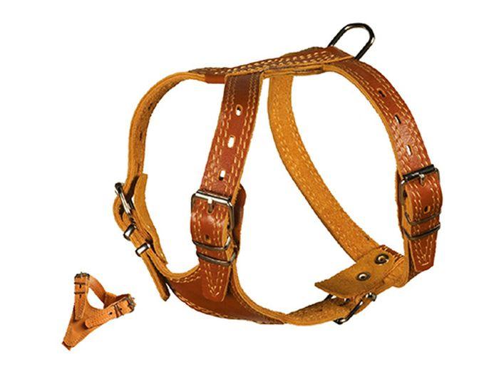 Шлейка для собак Каскад Элита, двойная, без украшений, ширина 4,5 см, цвет: коричневый01045001кКожаная шлейка для собак Каскад Элита- это альтернатива ошейнику. Крепкие металлические элементы делают ее надежной и долговечной. Правильно подобранная шлейка не стесняет движения питомца, не натирает кожу, поэтому животное чувствует себя в ней уверенно и комфортно. Изделие отличается высоким качеством, удобством и универсальностью. Размер регулируется при помощи металлических пряжек. Обхват шеи: 56 - 76 см. Обхват груди: 90 - 100 см. Ширина шлейки: 5 см.