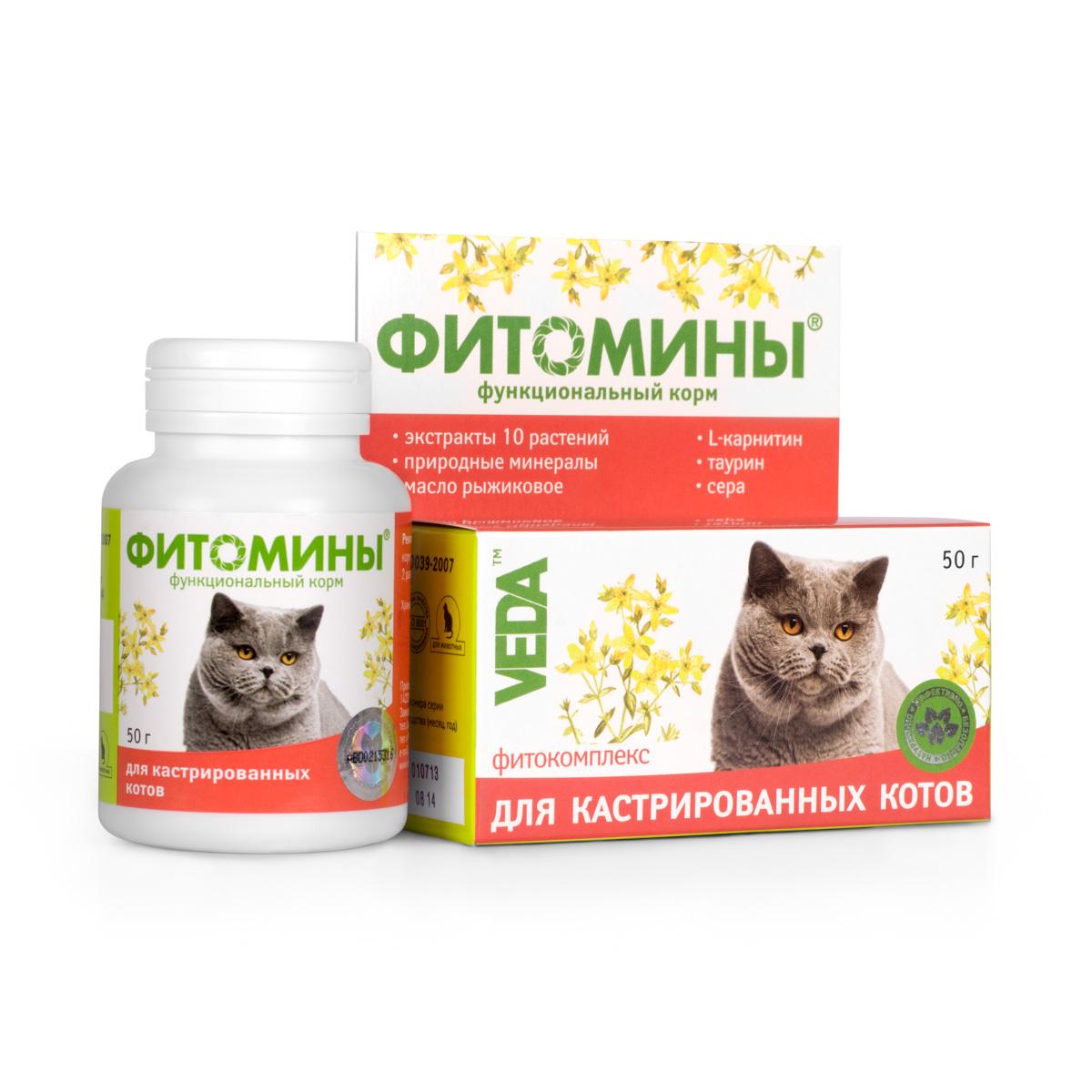 Корм VEDA Фитомины для кастрированных котов, функциональный, 50 г4605543005831Корм функциональный VEDA Фитомины рекомендуется кастрированным котам и стерилизованным кошкам:- для укрепления здоровья и улучшения качества жизни; - для снижения риска развития мочекаменной болезни и ожирения.Состав: лактоза; крахмал; дрожжи пивные; фитокомплекс: листьев березы, створок фасоли, листьев подорожника большого, травы душицы, корней одуванчика, травы тысячелистника, цветков ноготков, травы зверобоя, цветков лабазника вязолистного, листьев мяты перечной; природный минеральный комплекс; паровая рыбная мука; стеарат кальция; масло рыжиковое; L-карнитин; таурин; сера. Товар сертифицирован.Чем кормить пожилых кошек: советы ветеринара. Статья OZON Гид