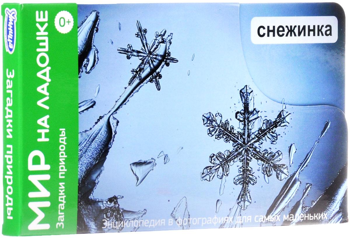 Умница Обучающая игра Загадки природы Снежинка умница обучающие карточки мир на ладошке выпуск 5