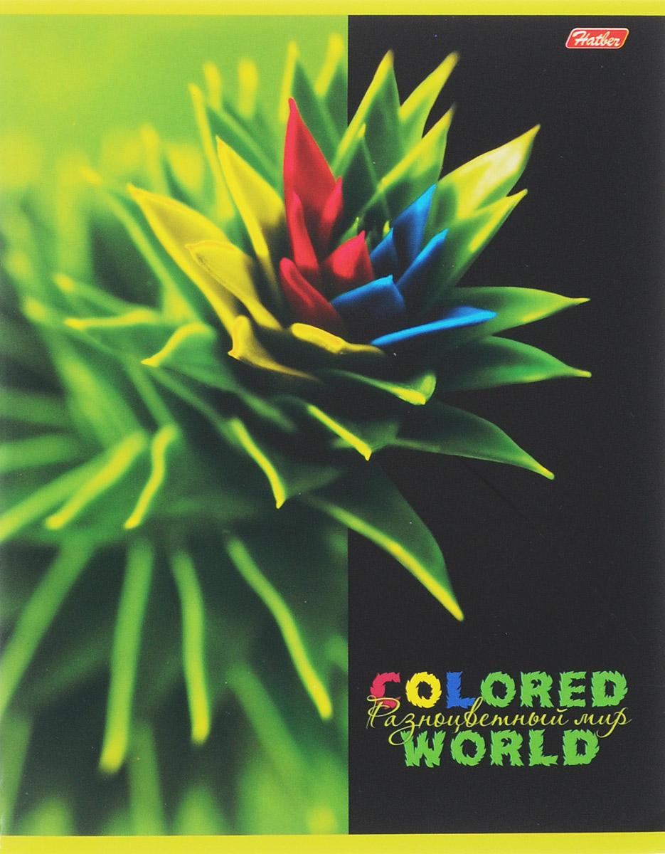 Hatber Тетрадь Разноцветный мир 96 листов в клетку 1455848Т5В1_15417Тетрадь Hatber Разноцветный мир отлично подойдет для старших школьников,студентов и офисных работников.Обложка, выполненная из плотного картона,позволит сохранить тетрадь в аккуратном состоянии на протяжении всеговремени использования. Лицевая сторона оформлена изображениемудивительных по красоте растений, раскрашенных в яркие и не свойственныеприроде причудливые цвета.Внутренний блок тетради, соединенный двумяметаллическими скрепками, состоит из 96 листов белой бумаги. Стандартнаялиновка в клетку голубого цвета дополнена полями, совпадающими с лицевой иоборотной стороны листа.