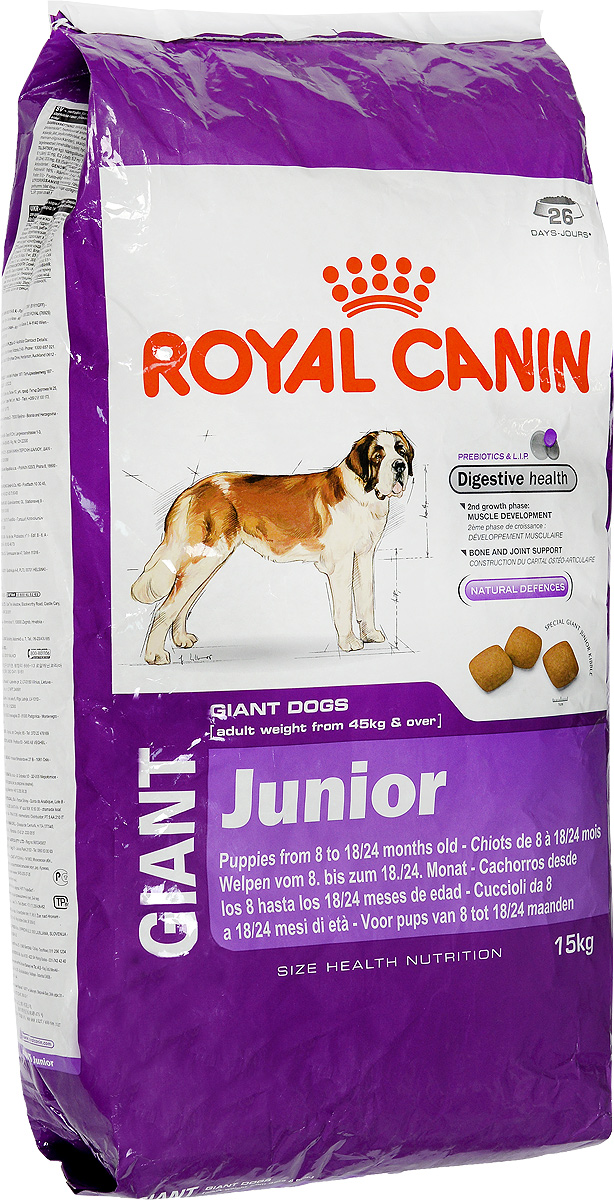 Корм сухой Royal Canin Giant Junior, для щенков собак очень крупных размеров, 15 кг00606Корм сухой Royal Canin Giant Junior - полнорационный сухой корм для щенков собак очень крупных размеров (вес взрослой собаки более 45 кг) в возрасте с 8 до 18/24 месяцев. Максимальная пищевая переносимость.Формула с содержанием высококачественных белков L.I.P, а также пребиотиков - фруктоолигосахаридов и маннановых олигосахаридов оказывает благоприятное воздействие на пищеварительную систему и поддерживает оптимальную консистенцию стула. Вторая фаза роста: развитие мышечной массы.Оптимальное количество белка и L-карнитина обеспечивают набор мышечной массы щенков собак очень крупных размеров во второй фазе роста (с 8 месяцев). Здоровье костей и суставов.Формула с оптимальным уровнем энергии и минералов (кальция и фосфора) способствует поддержанию костей и суставов щенков собак очень крупных размеров в период роста.Естественные механизмы защиты.Способствует поддержанию естественных защитных сил организма щенка благодаря запатентованному комплексу антиоксидантов и манноолигосахаридов. Товар сертифицирован.