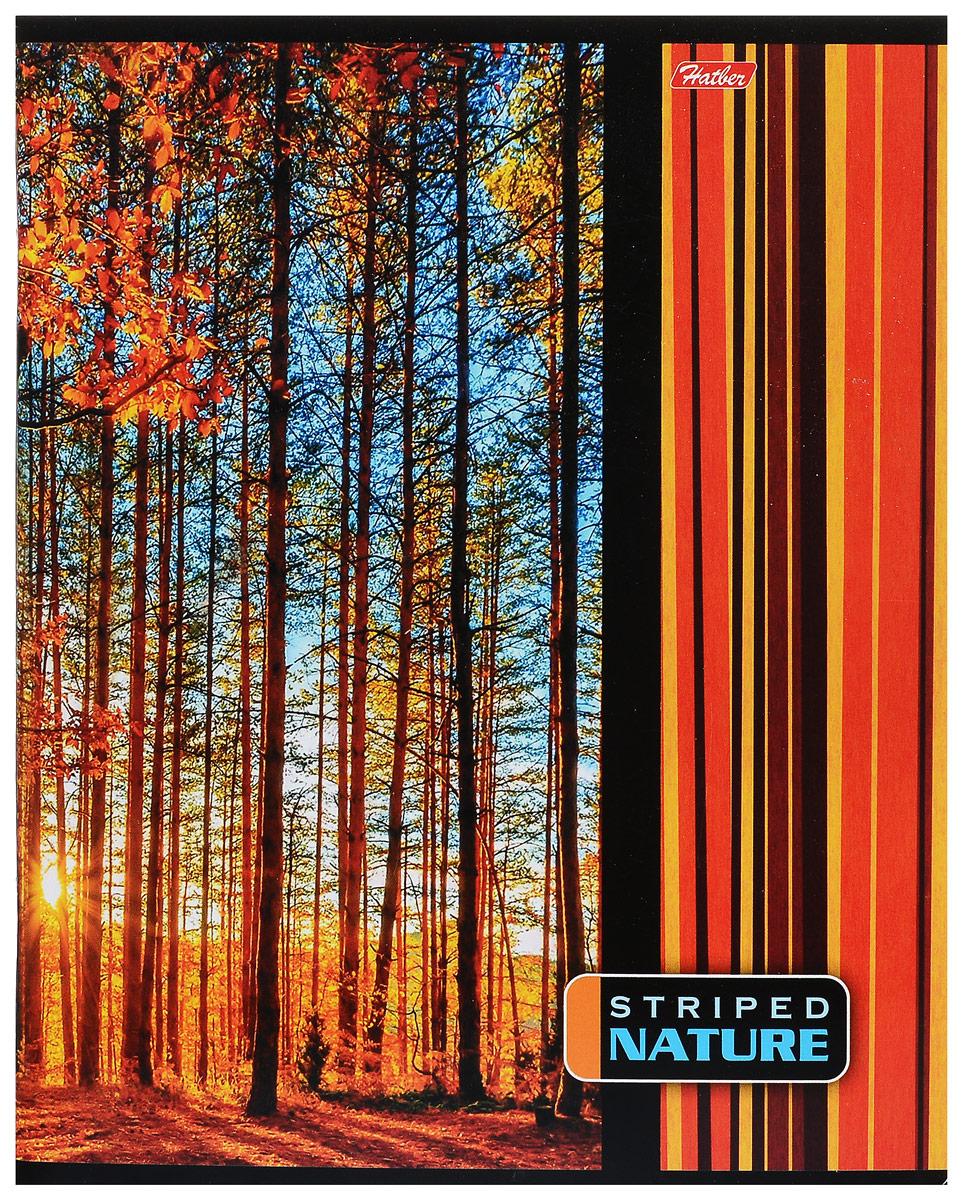 Hatber Тетрадь Полосатый мир 96 листов в линейку цвет оранжевый96Т5В2_14372Тетрадь Hatber Полосатый мир отлично подойдет для занятий школьнику, студенту или для различных записей.Обложка, выполненная из плотного картона, позволит сохранить тетрадь в аккуратном состоянии на протяжении всего времени использования. Лицевая сторона оформлена оригинальным цветным изображением.Внутренний блок тетради, соединенный двумя металлическими скрепками, состоит из 96 листов белой бумаги. Стандартная линовка в линейку голубого цвета дополнена красными полями.