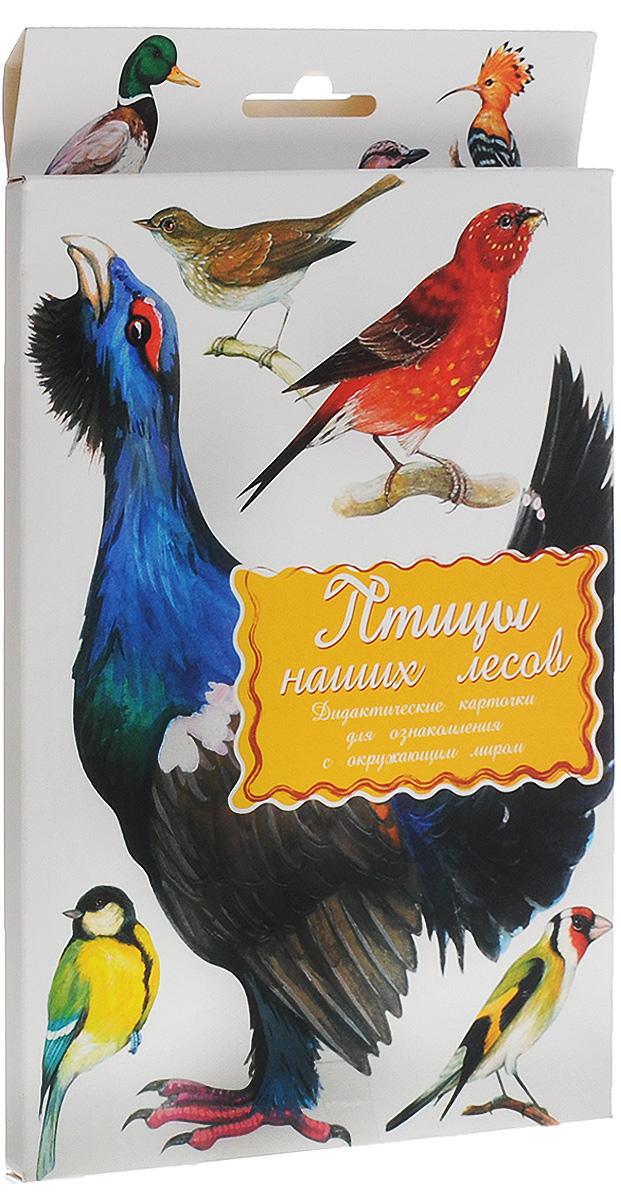 Маленький гений-Пресс Обучающие карточки Птицы наших лесов наборы карточек маленький гений удивительные приключения в лесу