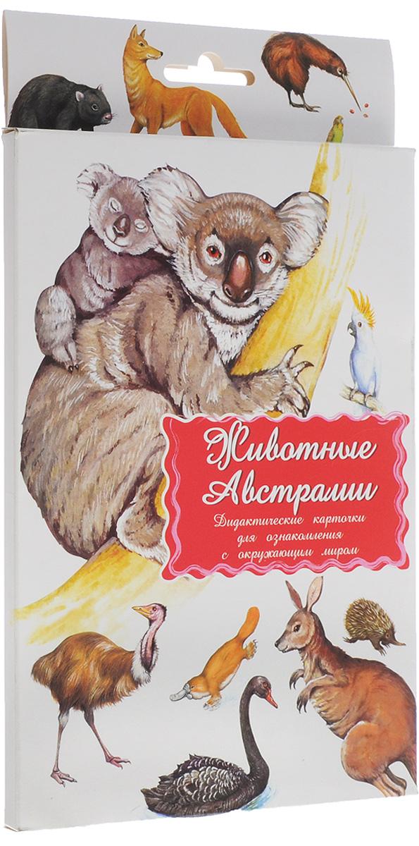 Маленький гений-Пресс Обучающие карточки Животные Австралии наборы карточек маленький гений удивительные приключения в лесу