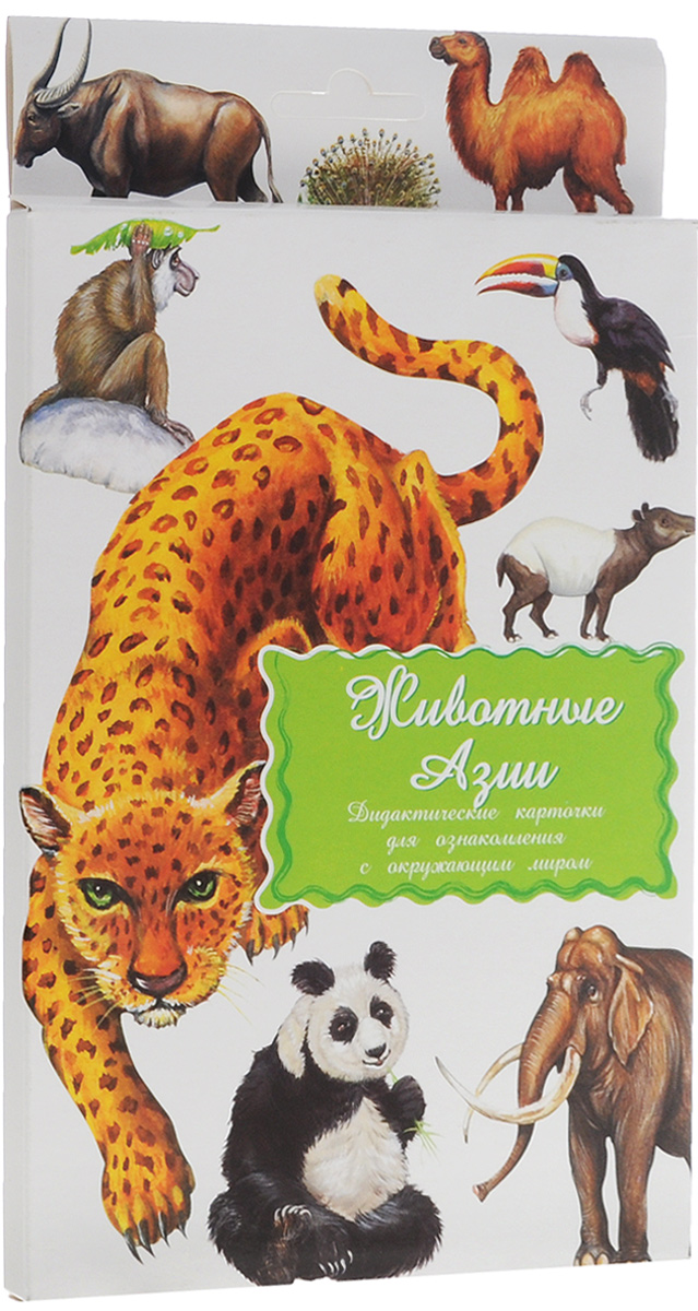 Маленький гений-Пресс Обучающие карточки Животные Азии маленький гений пресс обучающие карточки правила дорожного движения