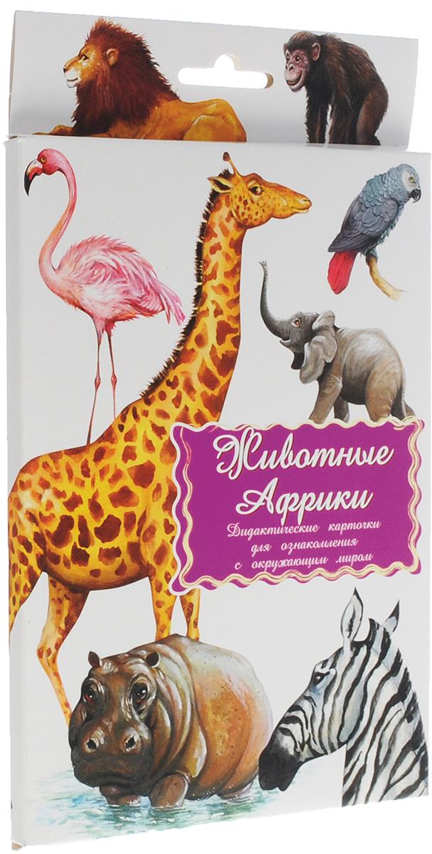 Маленький гений-Пресс Обучающие карточки Животные Африки маленький гений пресс обучающие карточки правила дорожного движения