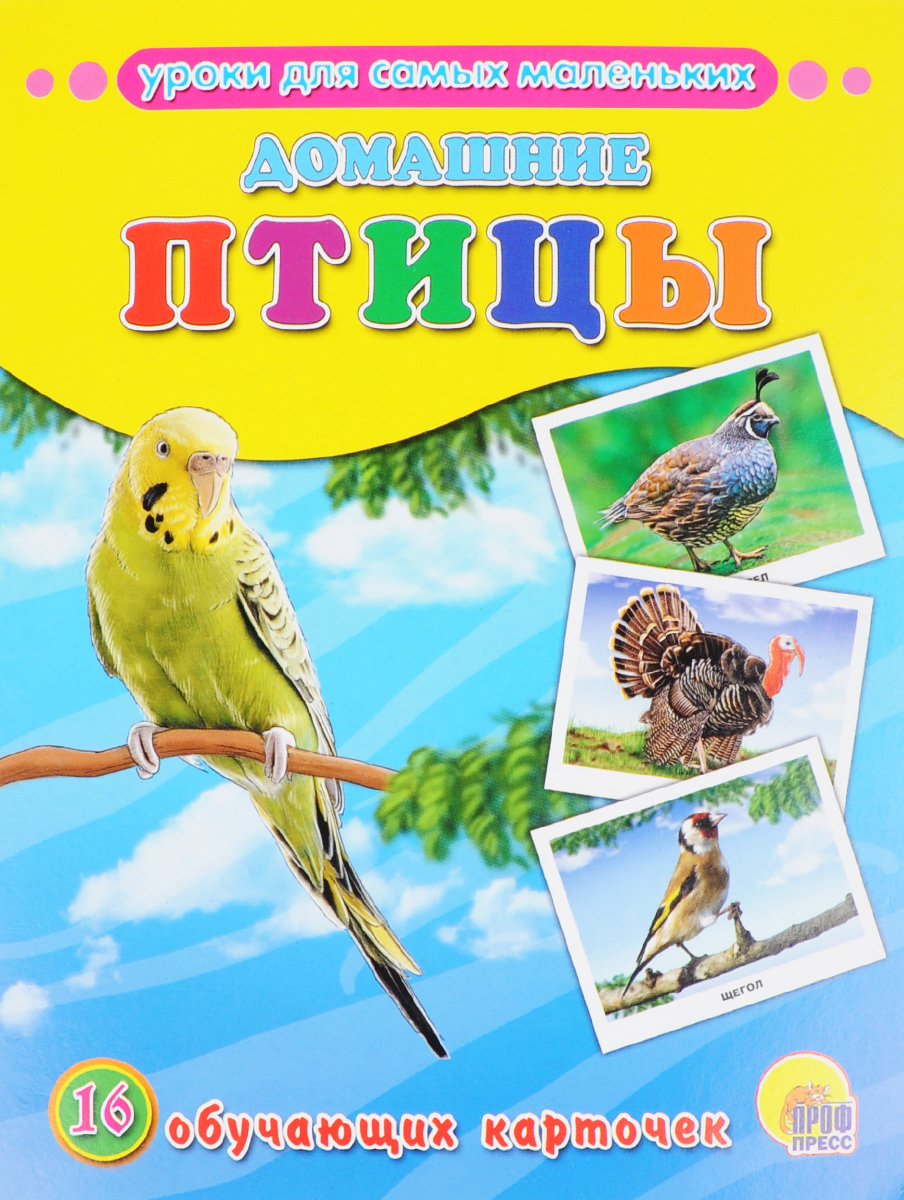 Домашние птицы (набор из 16 обучающих карточек) бытовая техника набор из 16 обучающих карточек