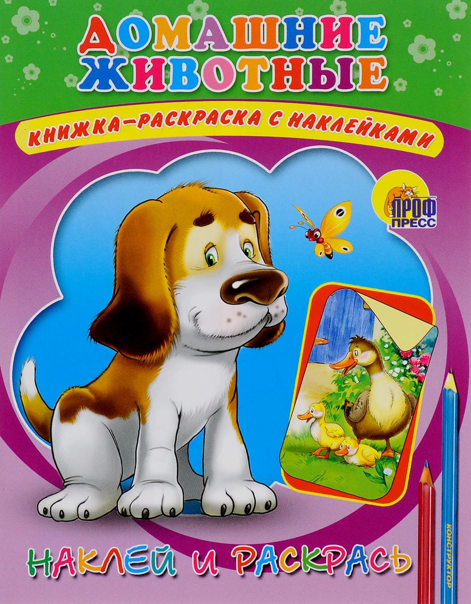 Домашние животные. Книжка-раскраска с наклейками