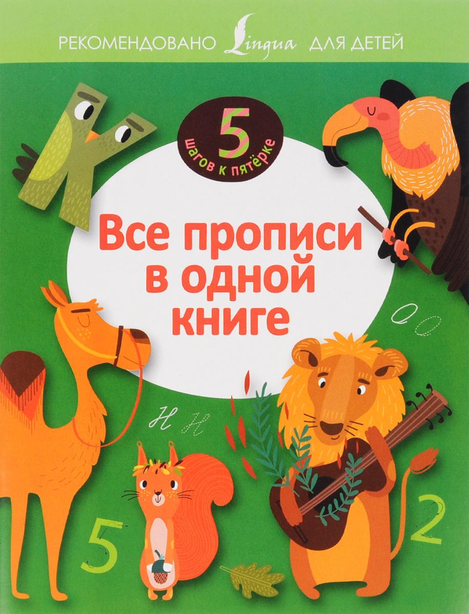 Все прописи в одной книге веер цифр и букв
