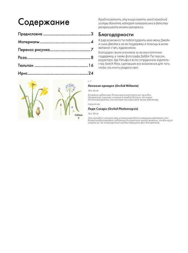 Нарисуй цветы в ботаническом стиле акварелью по схемам.