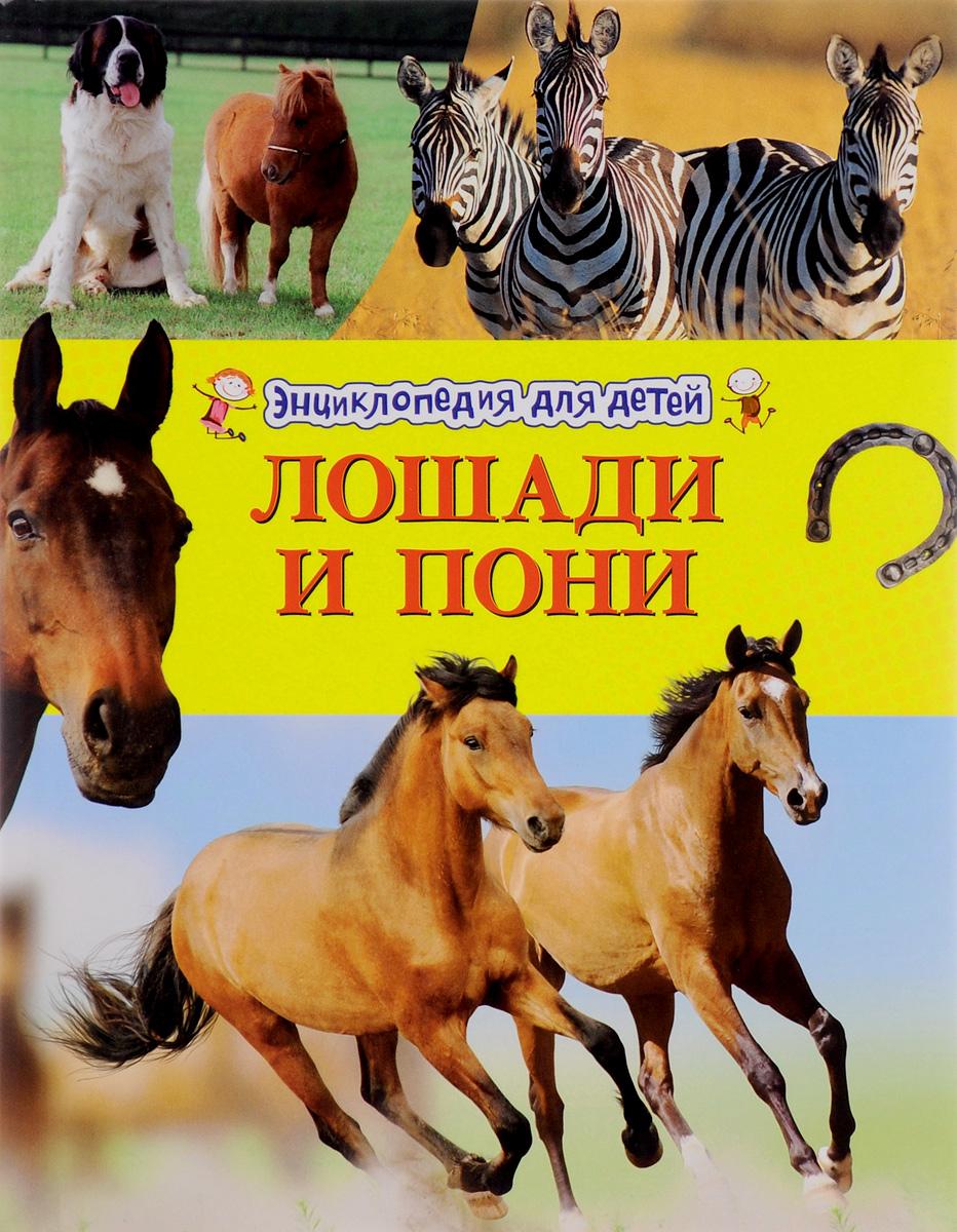 Камила де ла Бедуайер Лошади и пони махаон моя большая книга о лошадях и пони