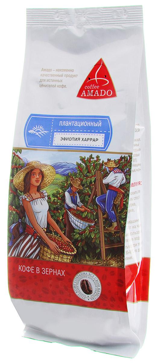 AMADO Эфиопия Харрар кофе в зернах, 200 г4607064133451Регион Древней Абиссинии (территория нынешней Эфиопии) является исторической родиной кофе. Кофе сорта Харрар обладает великолепным ароматом, играющим вкусом с фруктовым подтекстом. Рекомендуемый способ приготовления: по-восточному, френч-пресс, гейзерная кофеварка, фильтр-кофеварка, кемекс, и аэропресс.