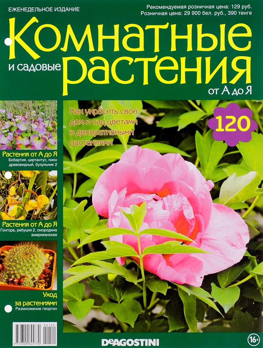 Журнал Комнатные и садовые растения. От А до Я №120 лесоповал я куплю тебе дом lp
