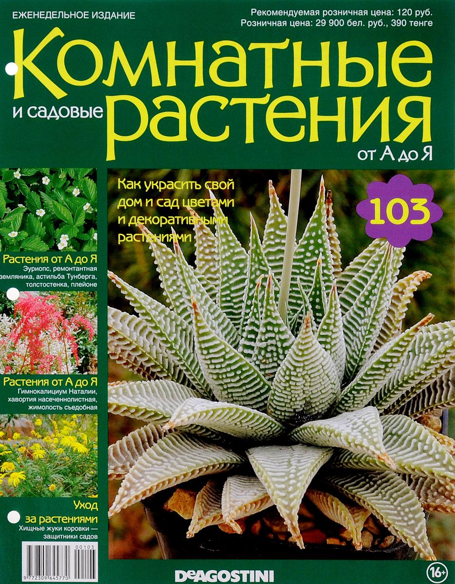 Журнал Комнатные и садовые растения. От А до Я №103 лесоповал я куплю тебе дом lp