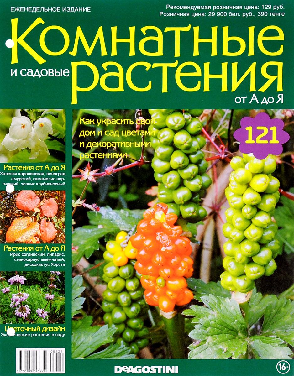 Журнал Комнатные и садовые растения. От А до Я №121 лесоповал я куплю тебе дом lp