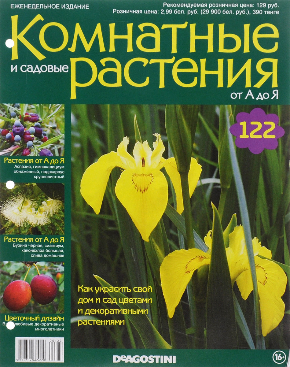 Журнал Комнатные и садовые растения. От А до Я №122 год до школы от а до я тетрадь по подготовке к школе