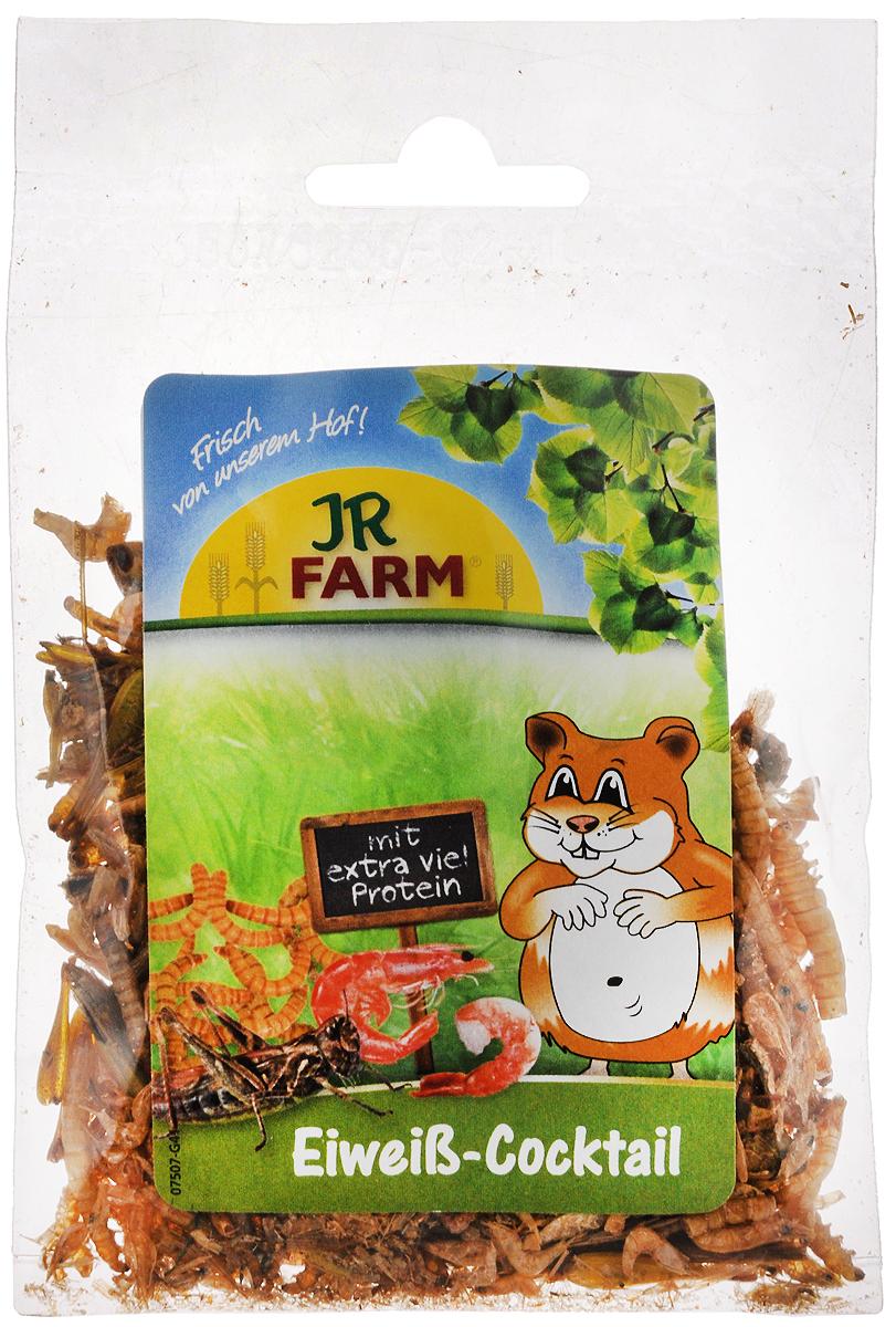 Смесь для грызунов JR Farm Протеиновый коктейль, 10 г сыворотка для лица farm stay farm stay fa035lwozm33
