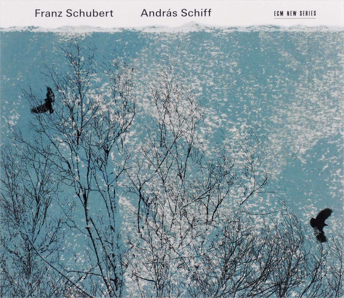 Андрас Шифф Andras Schiff. Franz Schubert (2 CD) grey two side pockets long sleeves outerwear