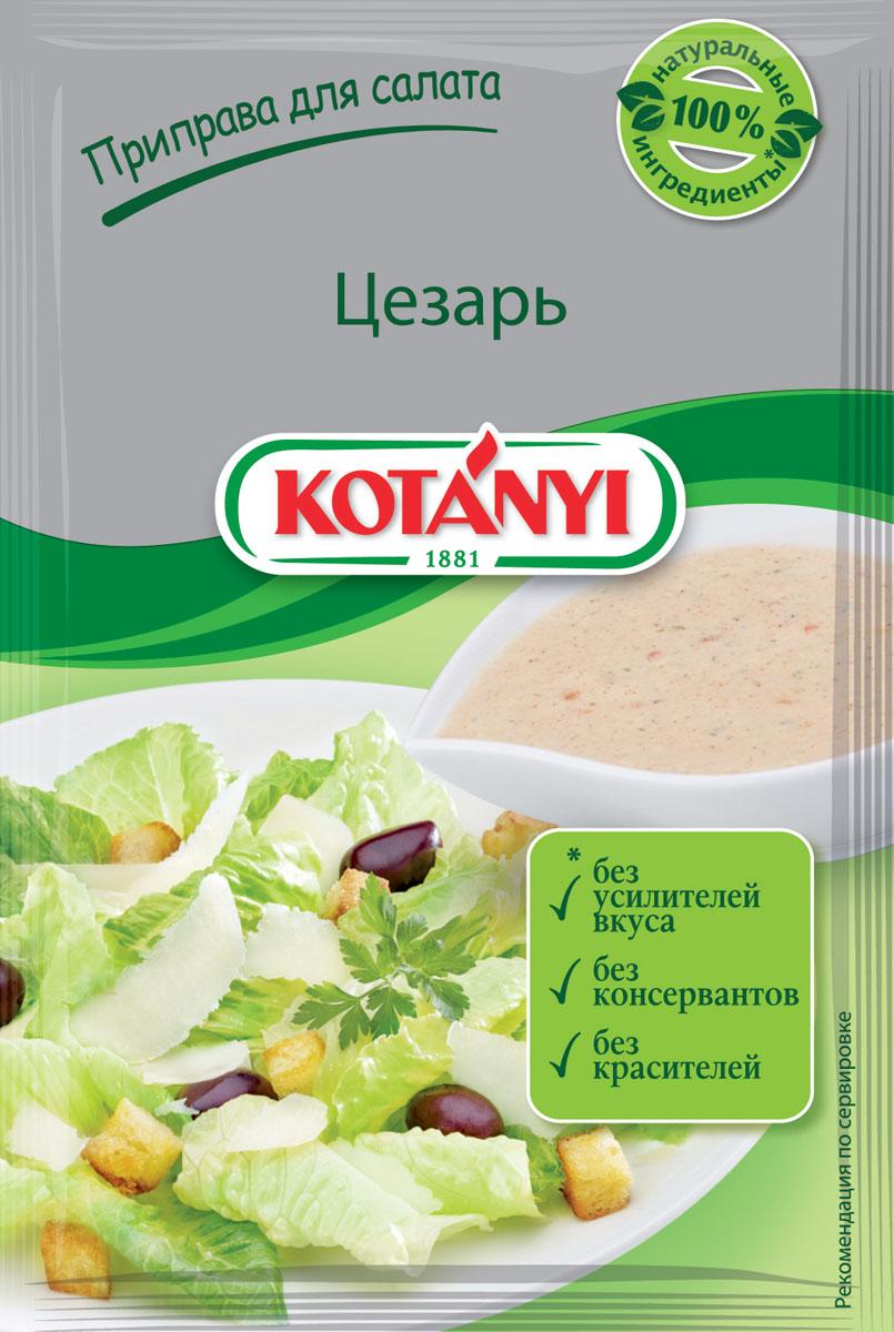 Kotanyi Приправа для салата Цезарь, 13 г