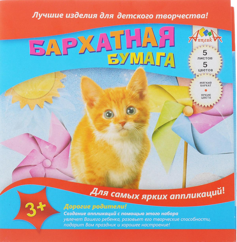 Апплика Цветная бумага бархатная Рыжий котенок 5 листов бумага цветная бархатная ракета 7 листов 7 цветов с0199 05