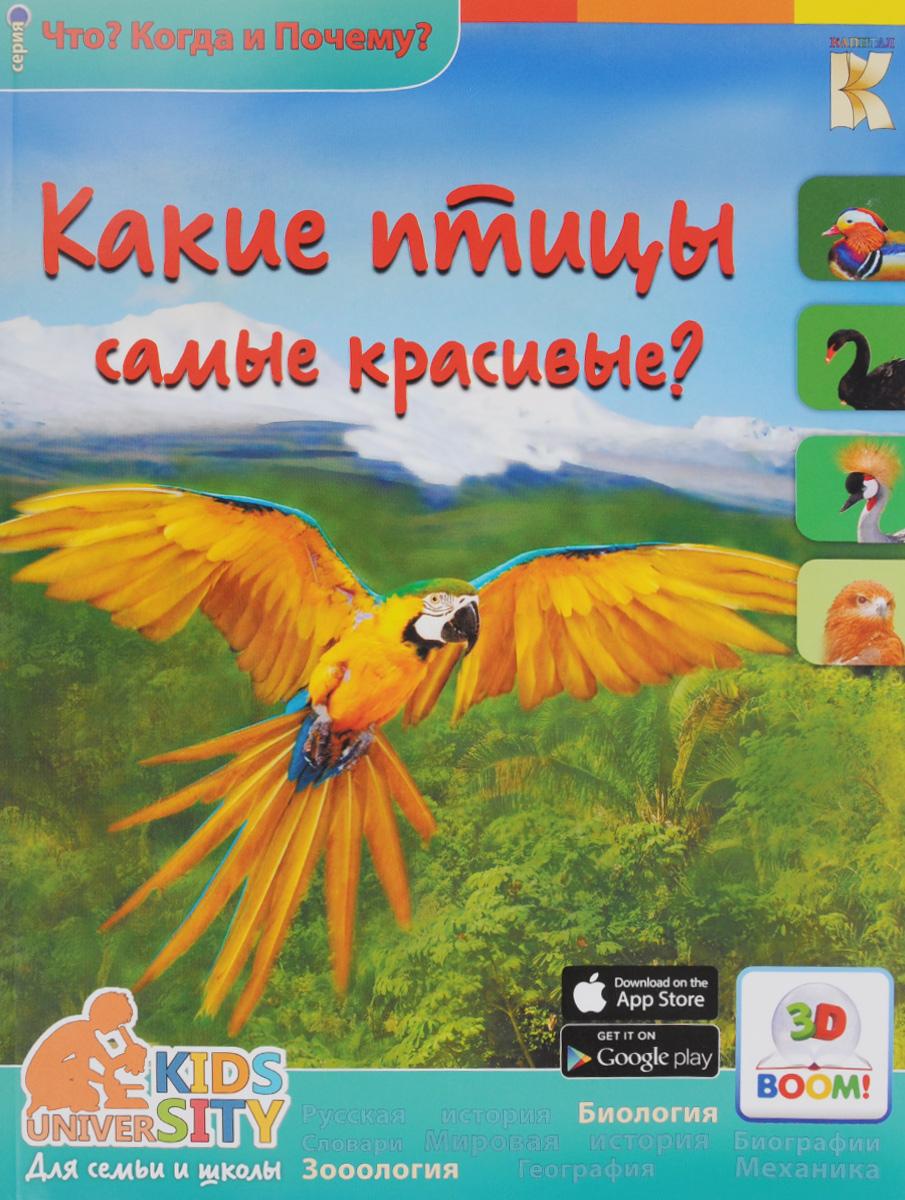 В. В. Владимиров Какие птицы самые красивые? владимиров в 3d boom какие птицы самые красивые