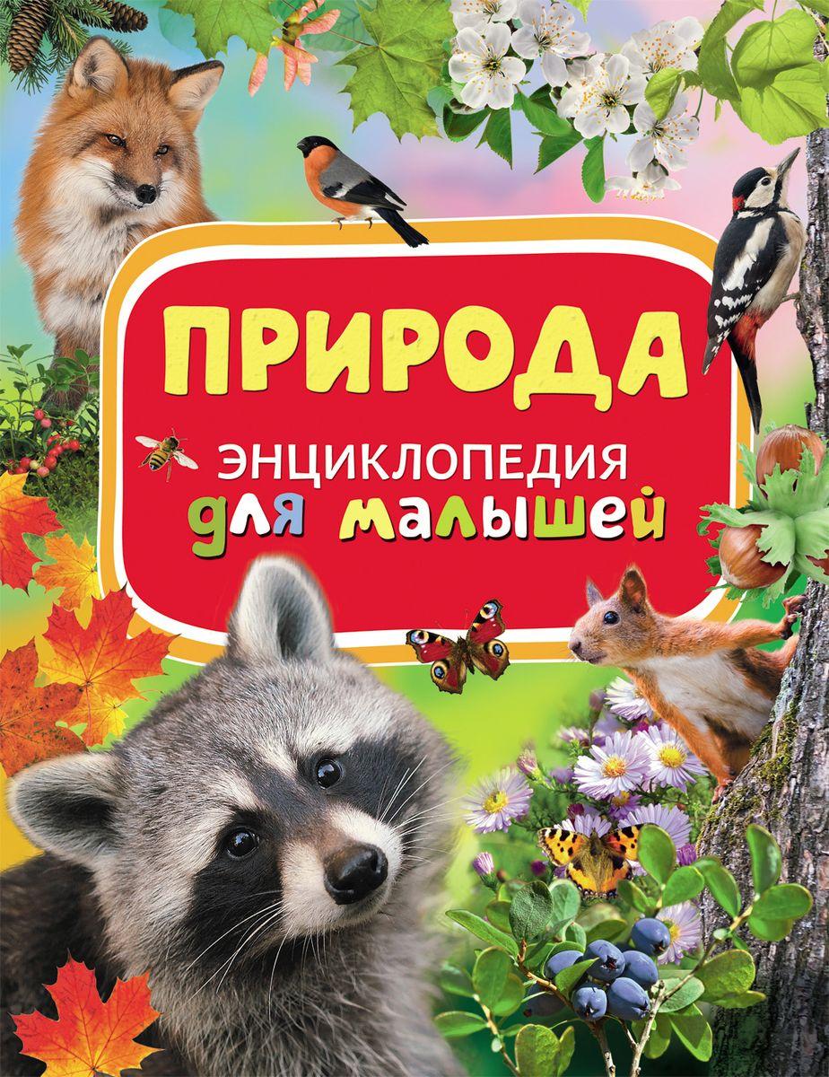 Природа. Энциклопедия для малышей летом осенью зимой весной летом картинки