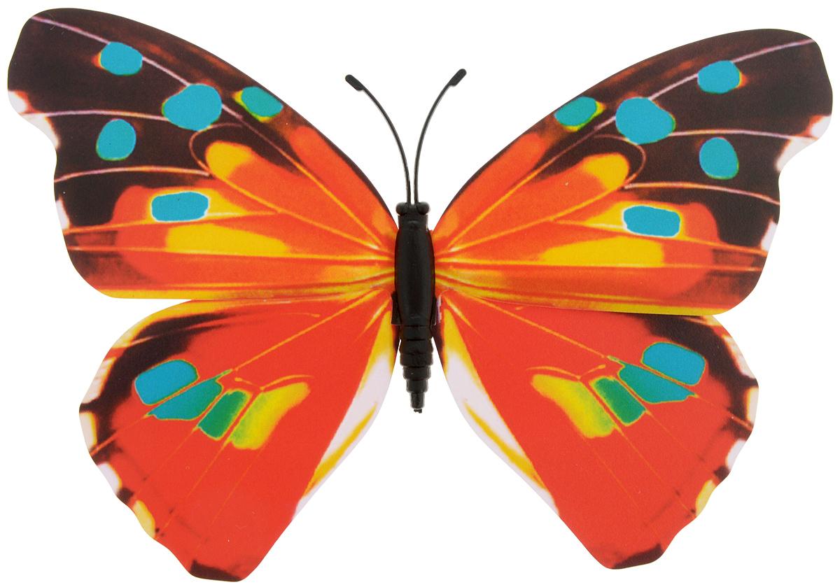 Декоративное украшение Village people Тропическая бабочка, с магнитом, цвет: красный, бирюзовый (19), 12 х 8 см68610_19Декоративная фигурка Village People Тропическая бабочка, изготовленная из ПВХ и магнита, это не только красивое украшение, но и замечательный способ отпугнуть птиц с грядок. Изделие выполнено в виде бабочки и оснащено магнитом, с помощью которого вы сможете поместить изделие в любом удобном для вас месте. Яркий дизайн изделия оживит ландшафтсада.