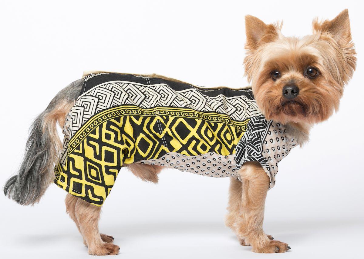 Комбинезон для собак Yoriki Зевс, для мальчика. Размер XL кепка для собак yoriki плащевка цветная размер универсальный