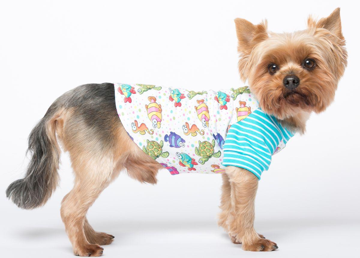 Футболка для собак Yoriki Немо, унисекс. Размер XXL392-05Хлопковая футболка для собак Yoriki Немо отлично защитит вашего питомца в летний день от пыли и насекомых. Благодаря такой футболке вашему питомцу будет комфортно наслаждаться прогулкой.Обхват шеи: 40-43 см.Длина по спинке: 41 см.Объем груди: 58-61 см.Одежда для собак: нужна ли она и как её выбрать. Статья OZON Гид