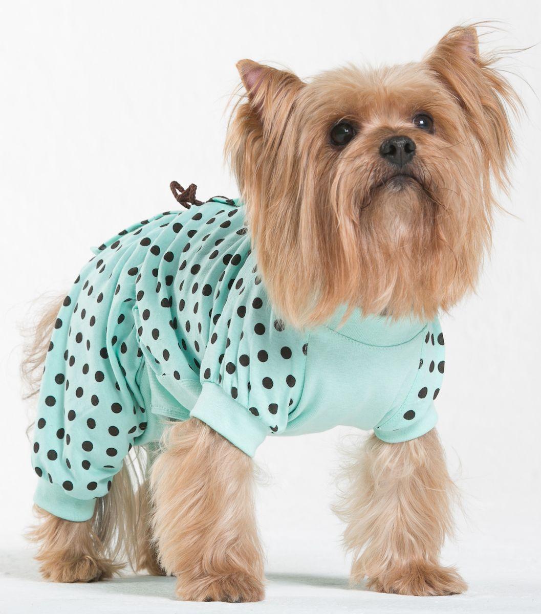 Трикотаж для собак Yoriki Витаминка, для девочки. 215-23. Размер L215-23Обхват шеи: 29 см.Обхват груди: 45 см.Длина спины: 28 см.Одежда для собак: нужна ли она и как её выбрать. Статья OZON Гид
