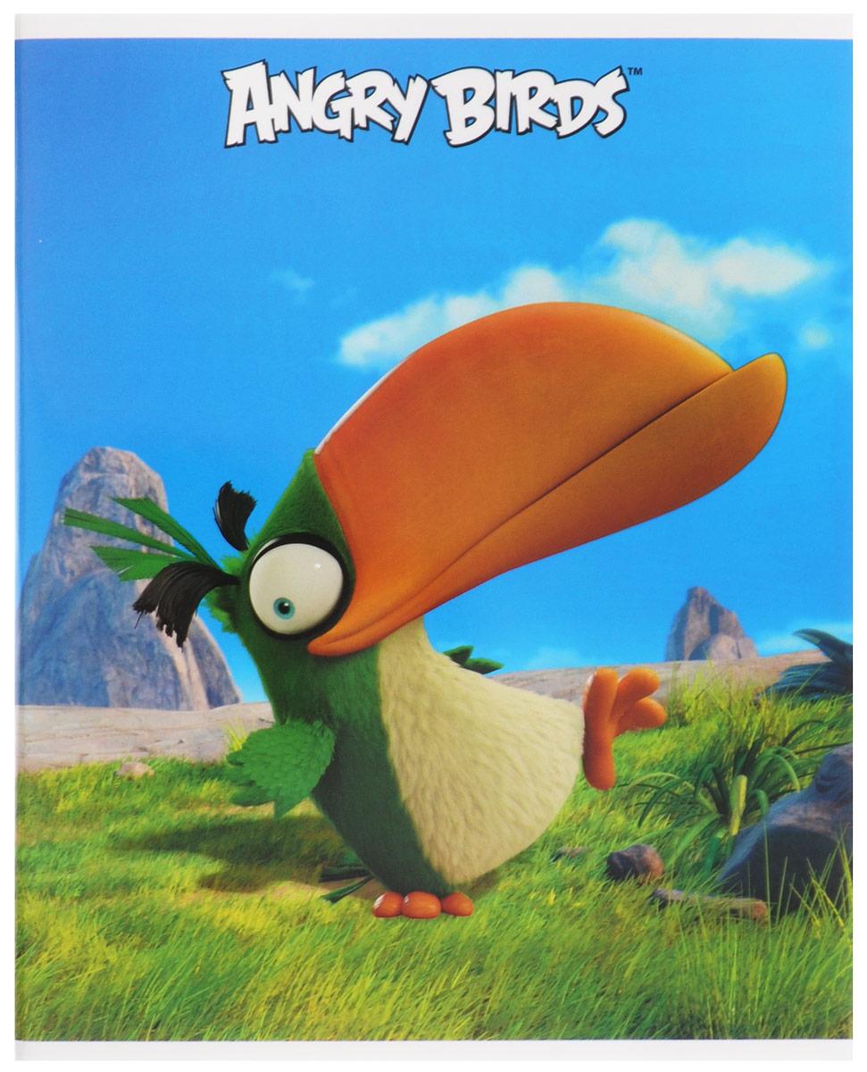Hatber Тетрадь Хэл 48 листов в клетку48Т5В1_15313Тетрадь Hatber Хэл отлично подойдет для занятий школьнику, студенту, а также для различных записей.Обложка, выполненная из плотного картона, позволит сохранить тетрадь в аккуратном состоянии на протяжении всего времени использования. Обложка оформлена изображением тукана Хэла из известной игры Angry Birds. Внутренний блок тетради, соединенный двумя металлическими скрепками, состоит из 48 листов белой бумаги. Стандартная линовка в клетку голубого цвета дополнена полями, совпадающими с лицевой и оборотной стороны листа. В верхнем углу каждой странички находится разделенное точками место для даты, в нижнем - пустые квадратики для номеров страниц.