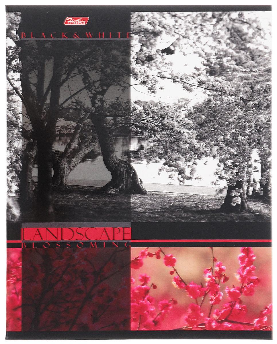 Hatber Тетрадь Цветущие пейзажи 60 листов в клетку цвет красный60Т5вмВ1_14563Тетрадь Hatber Цветущие пейзажи отлично подойдет для занятий школьнику, студенту, а также для различных записей.Обложка, выполненная из плотного картона, позволит сохранить тетрадь в аккуратном состоянии на протяжении всего времени использования. Обложка украшена изображением природы.Внутренний блок тетради, соединенный двумя металлическими скрепками, состоит из 60 листов белой бумаги. Стандартная линовка в клетку голубого цвета дополнена полями, совпадающими с лицевой и оборотной стороны листа. В верхнем углу каждой странички находится разделенное точками место для даты, в нижнем - пустые квадратики для номеров страниц.