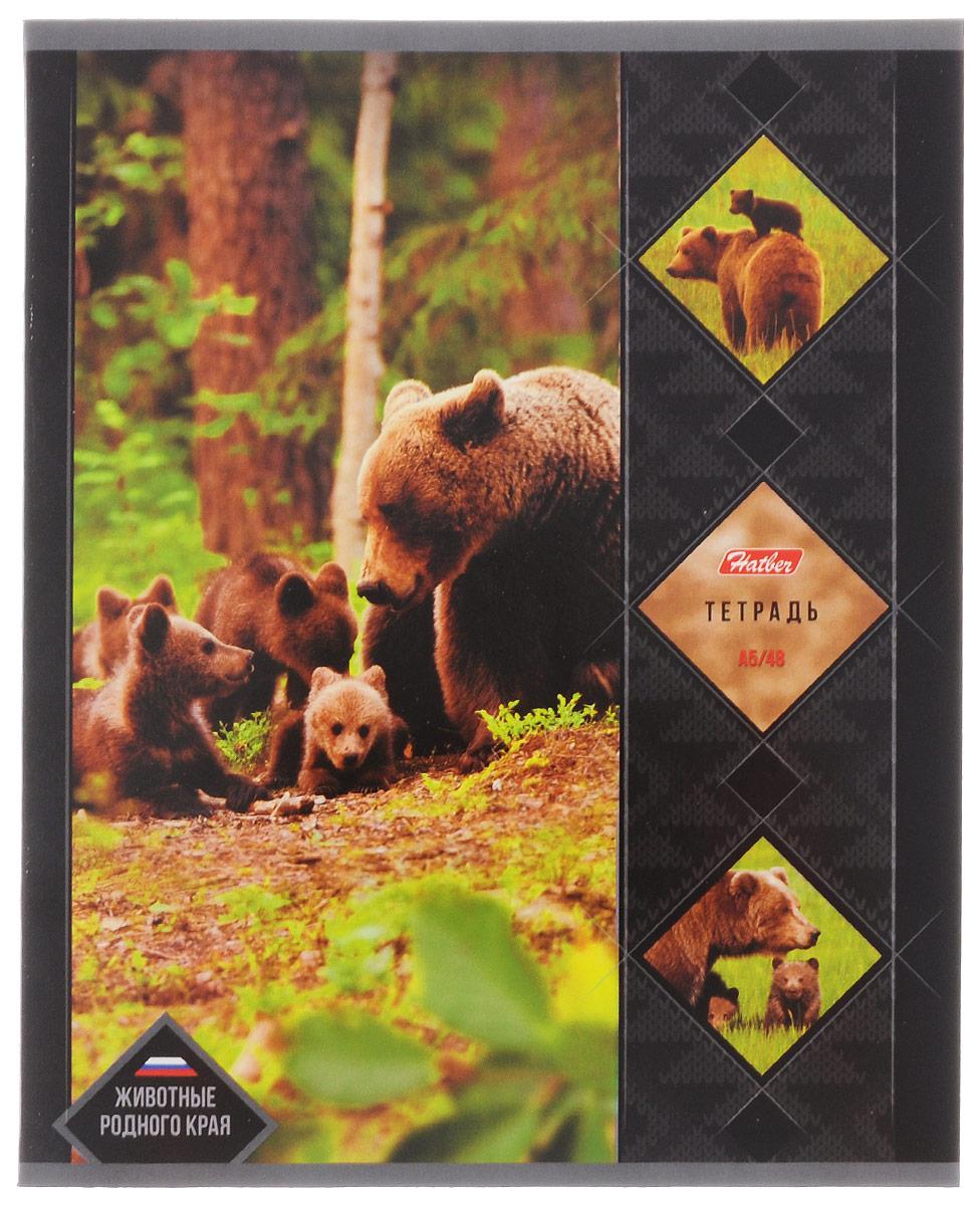 Hatber Тетрадь Животные родного края Бурый медведь 48 листов в клетку48Т5В1_14462Тетрадь Hatber Животные родного края. Бурый медведь подойдет как школьнику, так и студенту.Обложка выполнена из плотного картона, что позволит сохранить тетрадь в аккуратном состоянии на протяжении всего времени использования. Лицевая сторона оформлена изображением одного из животных, обитающих на территории Российской Федерации.Внутренний блок тетради, соединенный двумя металлическими скрепками, состоит из 48 листов белой бумаги. Стандартная линовка в клетку голубого цвета дополнена полями. В верхнем углу каждой странички находится разделенное точками место для даты, в нижнем - пустые квадратики для номеров страниц.