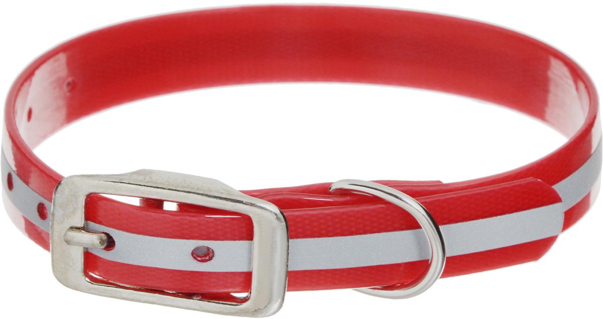 Ошейник для собак Каскад Синтетик, со светоотражающей полосой, цвет: красный, ширина 1,5 см, обхват шеи 26-35 см00215352-02Ошейник для собак Каскад Синтетик изготовлен из высокотехнологичного биотана (нейлон, термопластичный полиуретан). Сверхпрочный ошейник удобен и практичен в использовании, не выгорает, устойчив к влажности, не рвется и не деформируется. Изделие оснащено светоотражающей полоской. Размер ошейника регулируется с помощью металлической пряжки, которая фиксируется на одном из 7 отверстий изделия. Яркий ошейник Каскад Синтетик идеально подойдет для активных собак, для прогулок на природе и охоты в темное время суток.Минимальный обхват шеи: 26 см. Максимальный обхват шеи: 35 см. Ширина: 1,5 см.